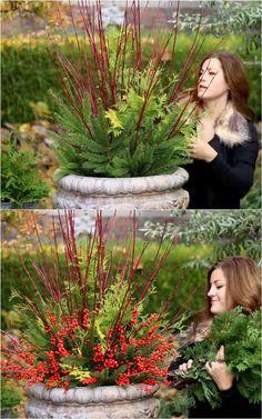 Outdoor Christmas Planters, Christmas Plants, Christmas Garden, Christmas Greenery, Outdoor Planters, Christmas Porch, Outdoor Christmas Decorations, Winter Christmas, Winter Porch