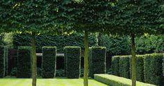 the boltons ~ luciano giubbilei garden design