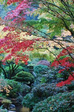 Japanese Garden, Photography, Landscape