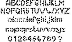 Spirulina Fonts Typography Webdesign Calligraphy