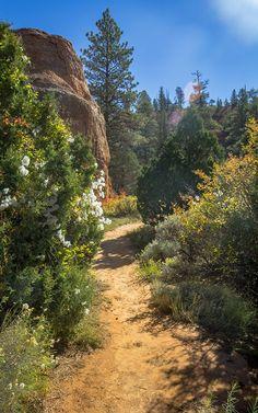 Randonnée, Red Canyon