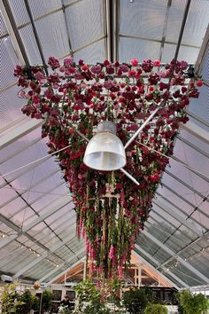 Hanging flowers! Floral installation by Rebecca Louise Law at Clifton Nurseries in London