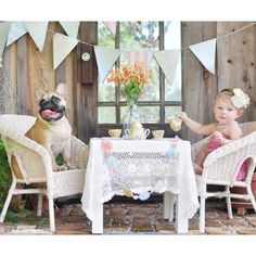 Cara Hosted a Tea Party for Dogs and Cockatoos -- The Cut