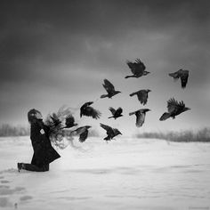 Image discovered by Lumen. Find images and videos about photography, art and black and white on We Heart It - the app to get lost in what you love. Oponopono Mantra, Joelle, Crows Ravens, Rabe, Dark Art, Magick, Dark Side, Awakening, Spirituality