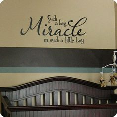 From $24.95, Big Miracle in a Little Boy