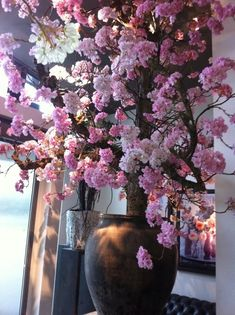 New Room, Paper Flowers, Places To Visit, Display, Living Room, Spring, Plants, Home Decor, Paisajes