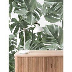 Botanical Wallpaper Monstera White by KEK Amsterdam Botanical Wallpaper, Of Wallpaper, Pattern Wallpaper, Amsterdam, Burke Decor, Mural Painting, Tropical Plants, Wall Design, Flora