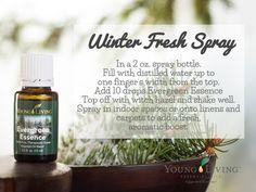 DIY Winter Fresh Spray                                                                                                                                                                                 More