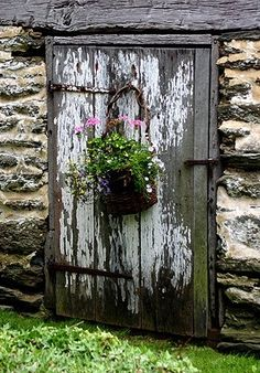 Rustic old door/pink and white plants by rene
