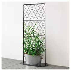 IKEA - BARSÖ, Trellis with base plate, The trellis with base plate helps support potted climbing plants.You can create a cozy, private outdoor space by covering the trellis in plants. Garden Trellis, Balcony Garden, Indoor Garden, Indoor Plants, Outdoor Gardens, Balcony Privacy Plants, Indoor Climbing Plants, Porch Trellis, Plant Trellis
