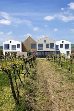 Gallery - Kindergarten over the Vineyard / architekti.sk - 5