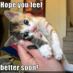 This is a great way to cheer someone up when they are sick, or hurt. Just send them this.