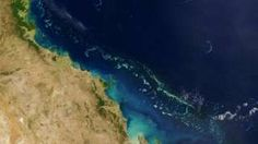 """Image copyright                  Getty Images                  Image caption                     The Great Barrier Reef is the world's largest living structure and can be seen from space.   Evidence that Australia's Great Barrier Reef is experiencing its worst coral bleaching on record has renewed calls for the UN to list it as """"in-danger"""". The National Coral Bleaching Taskforce says 95% of reefs from Cairns to Papua New Guinea are n"""