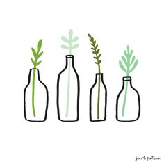 Plants and bottles