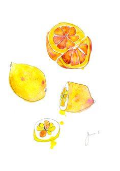 #イラスト #果物 #アート #ドローイング #インク #ペン #シンプル #動物 #オレンジ #リンゴ #ブドウ #シンプル #バナナ #レモン #illustration #fruits #art #drawing #ink #pen #simple #animal #junsasaki #orange #apple #grape #banana #lemon