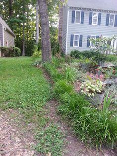 Stop next door's weeds from creeping into your garden.