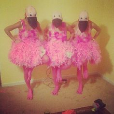 We did it!  Flamingo Costumes.
