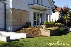 Zimozielony ogród przy białym domu - strona 155 - Forum ogrodnicze - Ogrodowisko
