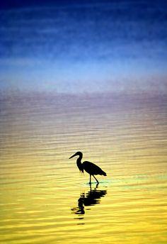 Morning - Villalba   Flickr - Photo Sharing!