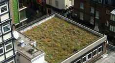 Landmark Living Roofs - photo gallery of our green roofs
