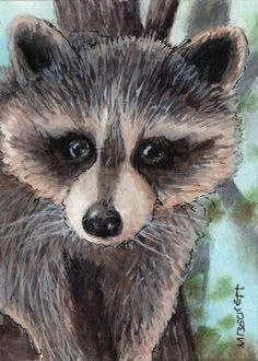 ACEO TW OCT Original Painting Raccoon animal wildlife mask rodent furry tree #Impressionism Raccoon Paws, Raccoon Animal, Nature Animals, Baby Animals, Otters Cute, Kingfisher Bird, Flower Artwork, Cat Mouse, Ocean Creatures