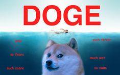 """""""Doge wow""""."""