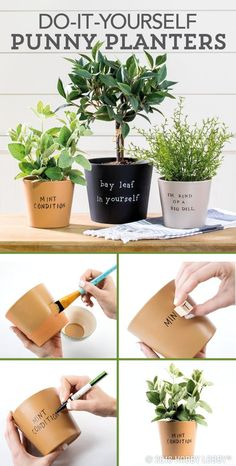 Diy Crafts : Illustration Description Show off your sense of humor with these DIY punny planters! -Read More – Diy Projects Videos, Diy Projects To Try, Succulents Garden, Diy Potted Plants, Garden Plants, Diy Planters, Indoor Plants, Planter Pots, Home Design