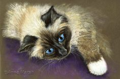BIRMAN CAT IN PENSIVE MOOD LIMITED EDITION PRINT OF PAINTING ANNE MARSH ART | eBay