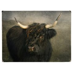 Bring a rustic touch to your walls with this stylish wood wall decor, featuring an artful portrait of a black cow. Product: Wal...