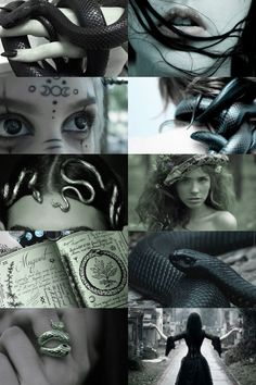 snake witch aesthetic (more here)