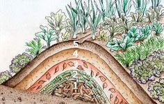 Ein Hügelbeet muß mindestens 400 x 180 Zentimeter groß sein.