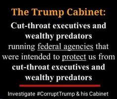 The Trump Cabinet.