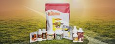 www.lexington.sg - Manufacturers, Suppliers & Exporters of Poultry Feed Additives from Singapore. We offer Probiotics, Antibiotics, Anticoccidials, Antioxidant, Electrolytes, Enzymes, Immunity Enhancers, Growth Promoters, Vitamin Premix, etc.
