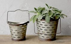 Planters | Hanging Planters | Metal Buckets
