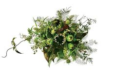 By Lauren Schwartzberg Photos by Bobby Doherty/New York Magazine   Trade the multicolored flowers for bouquets and centerpieces with succulents, jade roses, lily grass, and jasmine vine that make just as much of a statement. Ahead, we've rounded up 22 chic and seasonally appropriate suggestions for woodsy winter greens. More from The Cut: 46 Wedding Gowns That Shine, Swing, and Sparkle A Rehearsal-Dinner Dress for Every Type of Wedding 7 Wedding Gowns Fit for a Full-On Fairy Tale