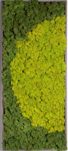 Verde Profilo - Product - Moss Painting_R - Image-2