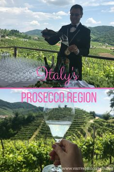 Did you know Italy's Prosecco region is one one hour from Venice making it the perfect day trip Day Trips From Venice, Dream It Do It, Regions Of Italy, Drink Wine, Sparkling Wine, Prosecco, Wine Tasting, Did You Know, Backdrops
