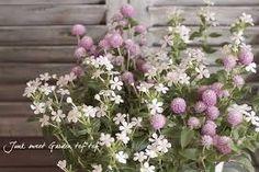 千日紅 寄せ植え - Google 検索 Floral Wreath, Wreaths, Plants, Gardening, Decor, Google, Floral Crown, Decoration, Door Wreaths