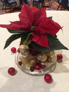 Poinsettia centerpieces $6 each. Materials from Trader Joes and Michaels