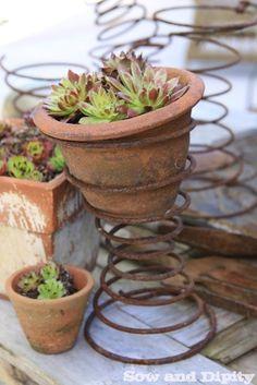 Succulent planter ~ Northwest Garden Show Ideas