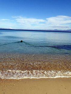 Kriopigi Beach off season - heaven! That is my gorgeous boy Scoobs swimming. Greece Culture, Halkidiki Greece, Greece Fashion, Greece Holiday, Greece Travel, Beautiful Sunset, Snorkeling, Scuba Diving