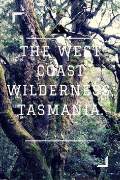 Exploring the West Coast of Tasmania, here at Cradle Mountain National Park Tasmania Road Trip, Organic Gardening Magazine, Australia Travel Guide, Travel Tips, Travel Plan, Travel Stuff, Travel Guides, Travel Destinations, European Travel