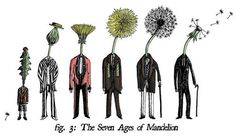 The Seven Ages Of Mandelion by Jonathan Turner