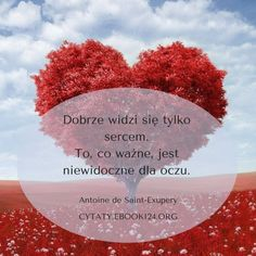 Antoine de Saint-Exupery cytat o tym co ważne Love Words, Motto, Diy And Crafts, Saints, Valentines, Thoughts, Day, Quotes, Inspiration