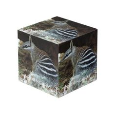N For Numbat Cube Artsy Couture, Photo Cubes, Images And Words, 4 Photos, Cleaning Wipes, Decorative Boxes, Display, Wood, Metal