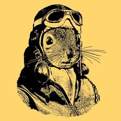 Flying Squirrel shirt - just makes me smile