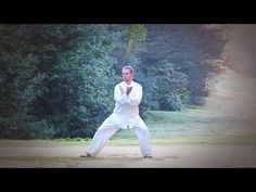 Chen style Tai chi Beginners 18 form, follow along (behind view) - YouTube