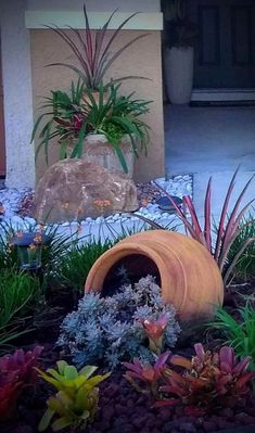 Succulent Landscaping, Tropical Landscaping, Landscaping With Rocks, Landscaping Tips, Tropical Garden, Front Yard Landscaping, Florida Landscaping, Tropical Plants, Outdoor Landscaping