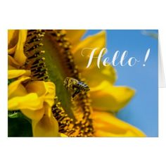 Hello Bee on Sunflower Macro Photo Card - flowers floral flower design unique style