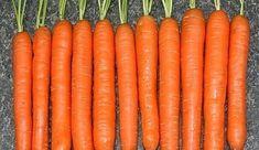Myslíme si, že by sa vám mohli páčiť tieto piny - sbel Czech Recipes, Hydroponics, Gardening Tips, Harvest, Carrots, Food And Drink, Home And Garden, Flora, Vegetables